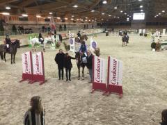 Formation Sport-Etude Equitation accessible à tous